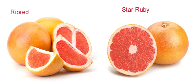 riored and star ruby grapefruit