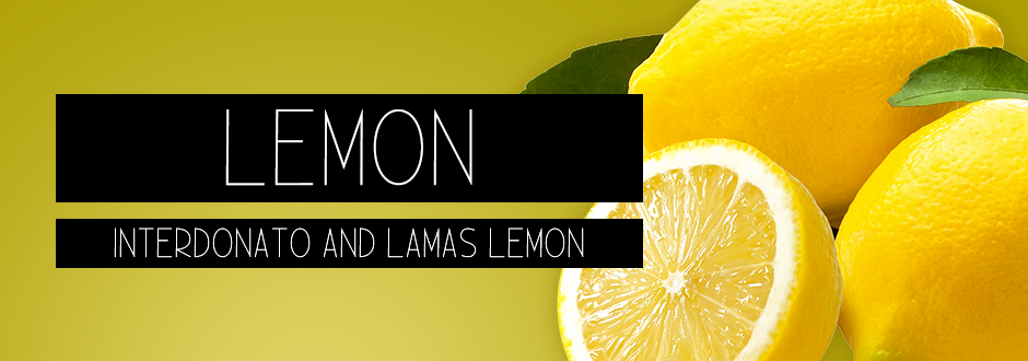 interdonato and lamas lemon