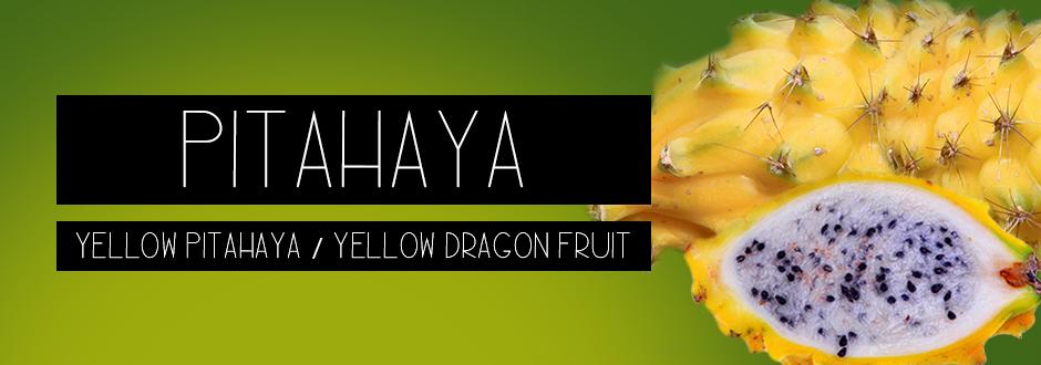 hong kong yellow pitahaya