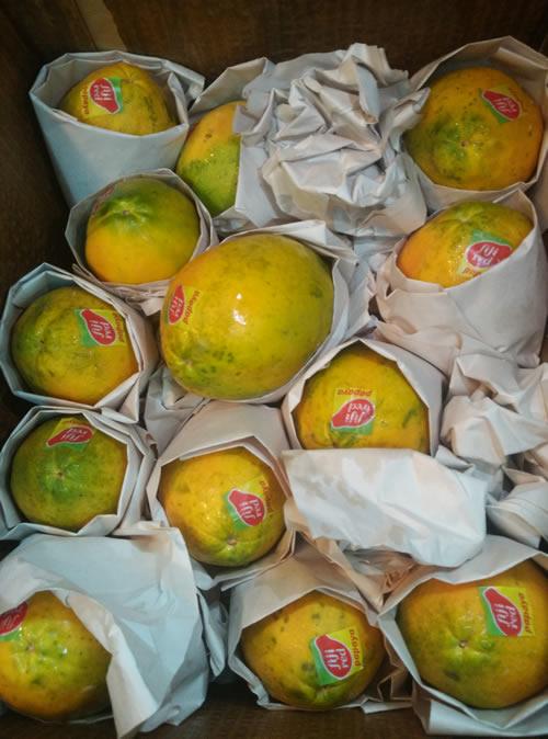 fiji papaya box