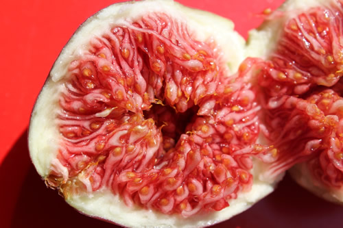 fresh fig inside hongkong