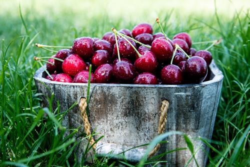 bilvigo cherry yummy