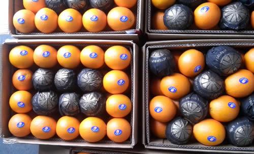 valancia orange